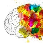 Neurosciences et Sciences Cognitives